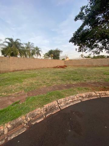 Alugar Terreno / Condomínio em Ribeirão Preto. apenas R$ 530.000,00